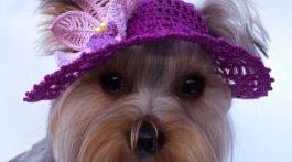 regalo navidad original-crochet mascotas-otakulandia.es (13)