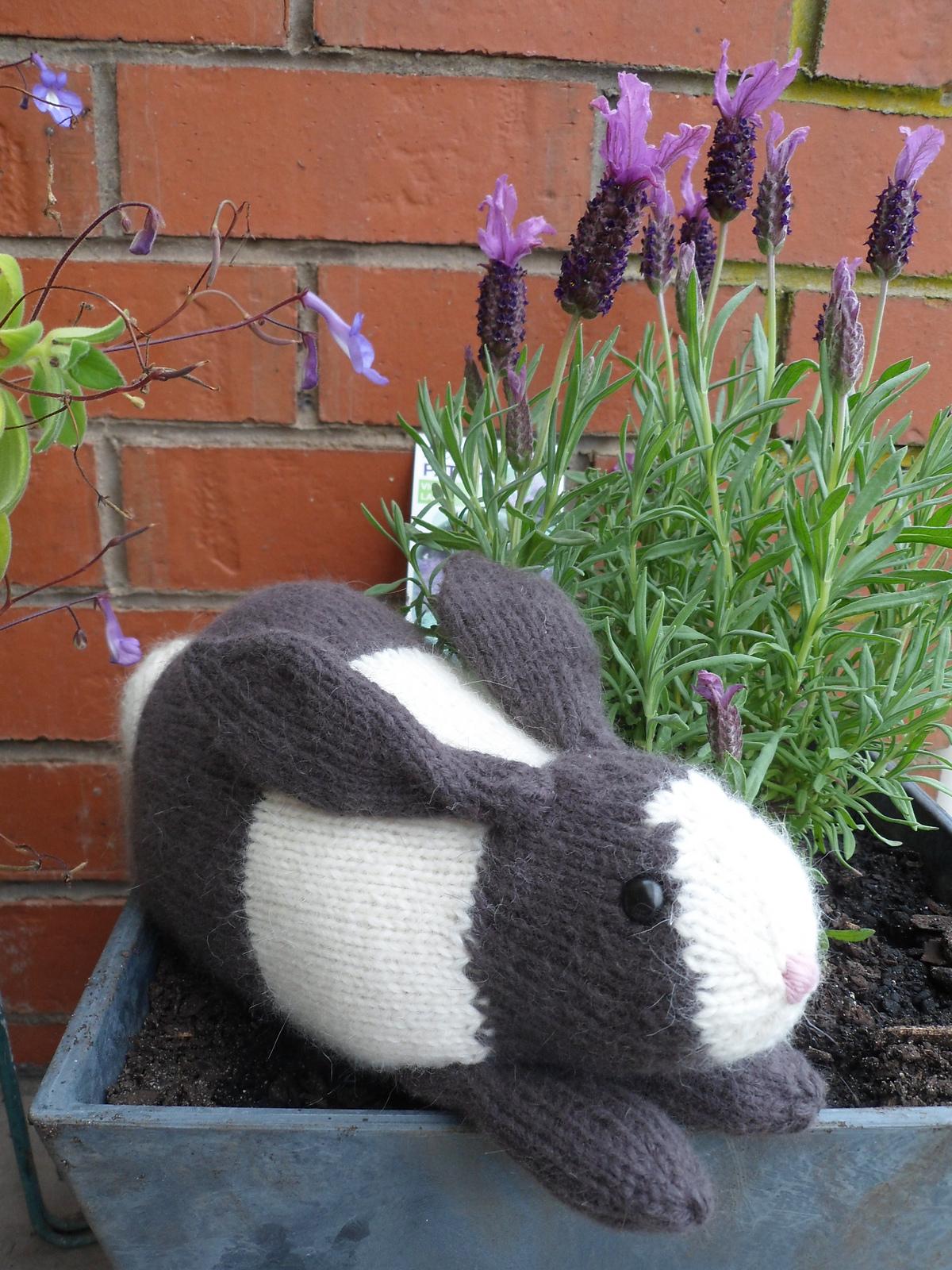 conejo amigurumi-2 agujas-otakulandia.es (11)