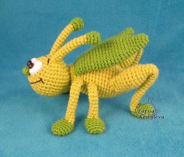 grasshopper_aiid1605639